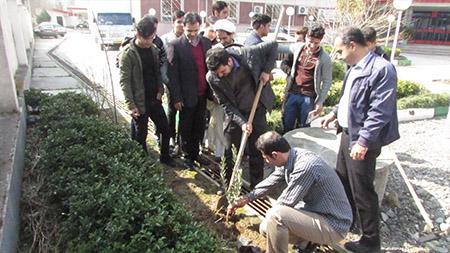 کاشت 30 اصله نهال در سما لاهیجان به مناسبت روز درختکاری